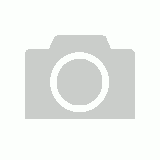 Radish red rambo sprouting seeds